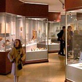Nun stehen 25 x soviel Ausstellungsflächen in Vitrinen zur Verfügung wie bisher!
