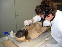 Die Restauratorin Stephanie Steinegger bei der konservatorischen Behandlung einer Mumie.
