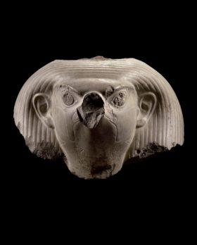 Falkenkopf mit menschlichen Ohren